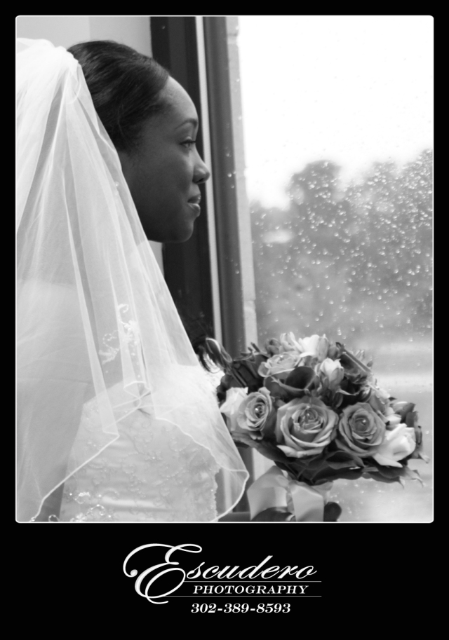 Wedding Photography for Newark Delaware Wedding