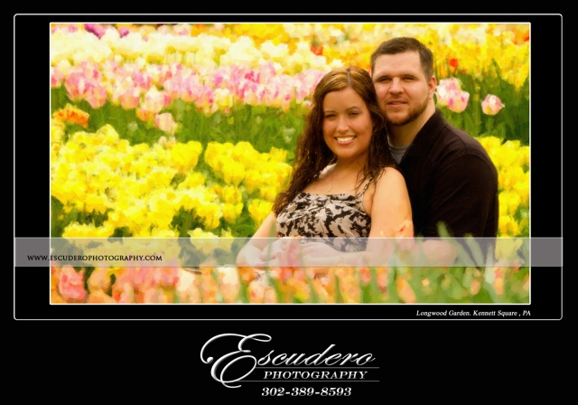 Engagement pictures at Longwood Gardens