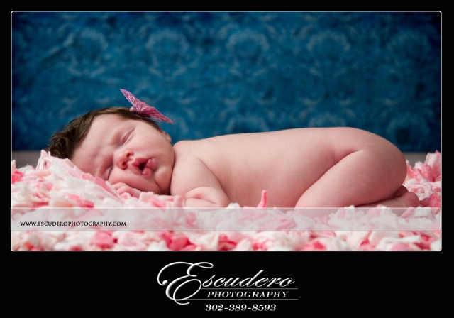 Newborn Photography in Clayton Delaware