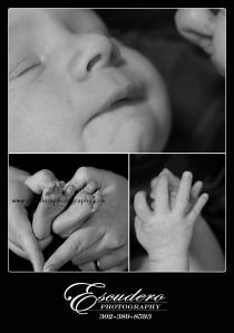 Newborn Portraits Delaware