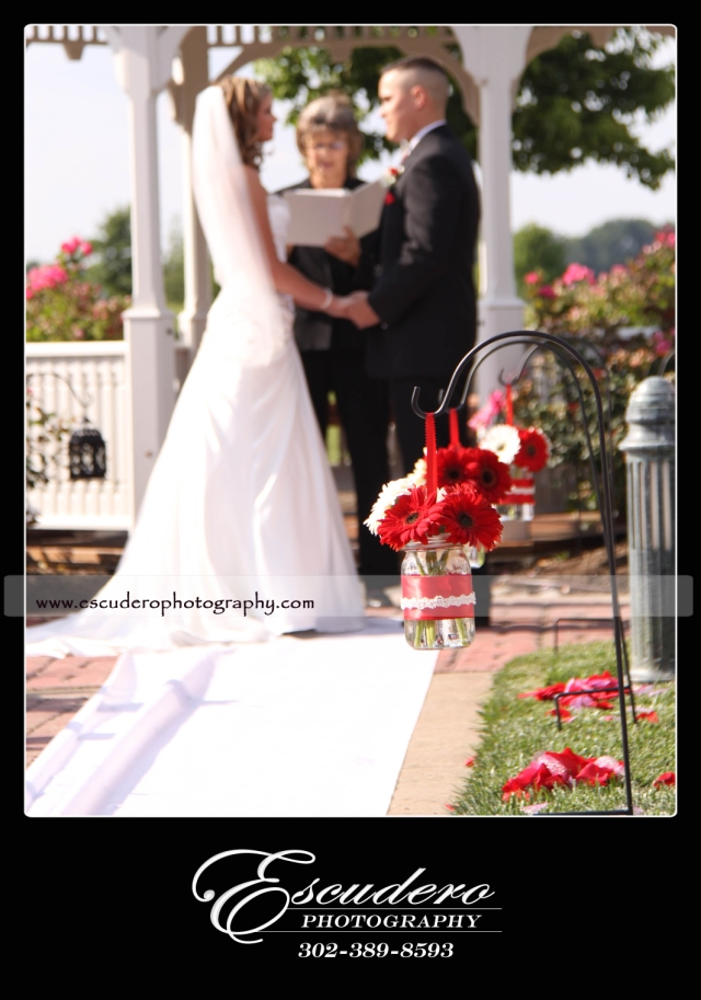 Wedding Photographer Delaware Bridgeville