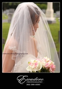 Delaware Professional Photography
