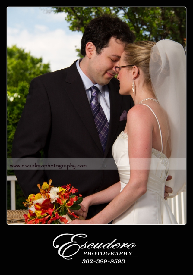 Professional Wedding Pictures Delaware