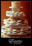 Delaware Wedding Pictures