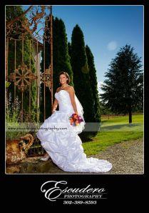 Professional Photographer Wedding