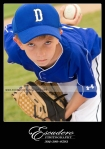 little league photography