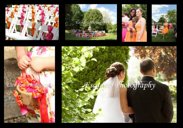delaware wedding collage